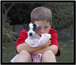 Just a boy and his dog